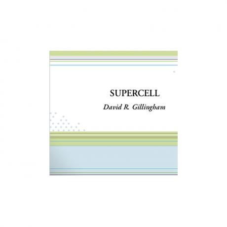 SuperCell by David R. Gillingham