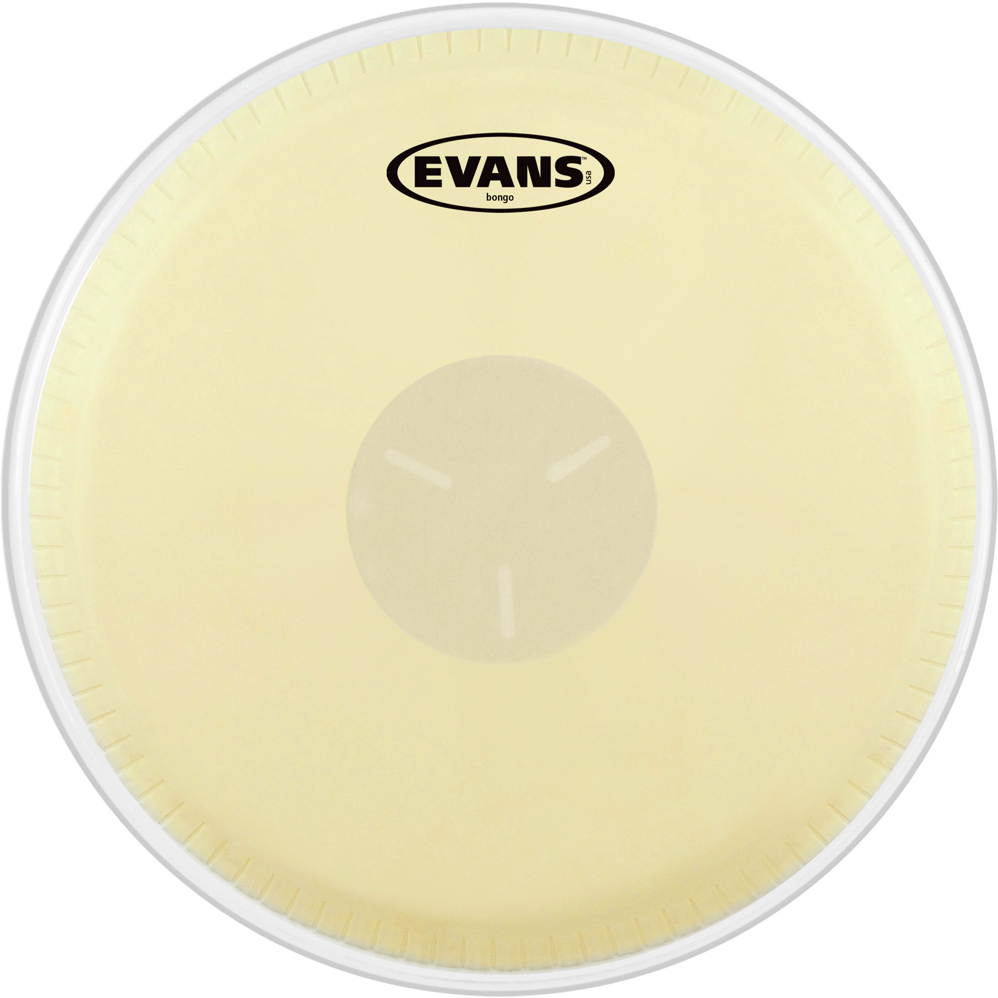 "Evans 7.25"" Tri-Center Bongo Head"