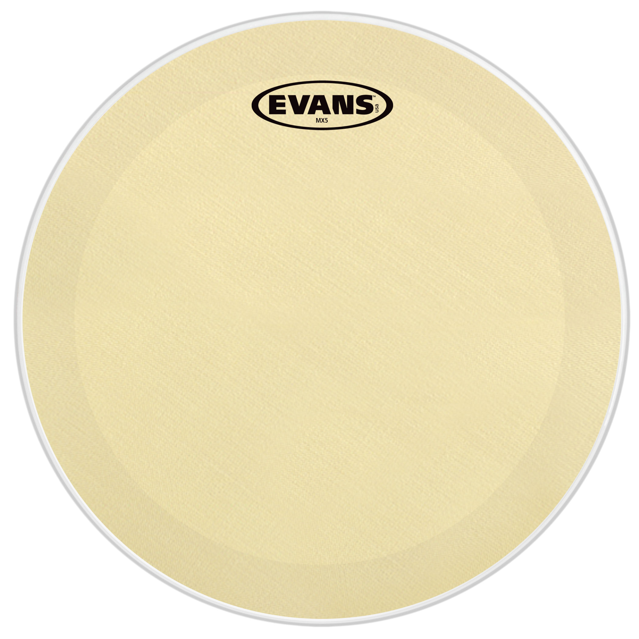 "Evans 13"" MX5 Marching Snare Bottom Head"